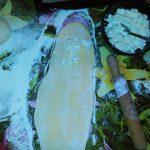 Kiflice i ružice  sa bundevom punjene sirom
